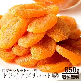 ドライアプリコット トルコ産 アプリコット 850g [ 乾燥果物 あんず 杏 送料無料 ドライフルーツ 砂糖不使用 大容量 訳あり ドライフルーツ ドライ フルーツ クエン酸 βカロテン ] 大容量 お徳用 1kgより少し少ない850g お取り寄せグルメ
