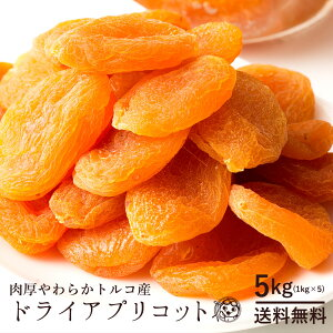 ドライアプリコット トルコ産 アプリコット 5kg(1kg×5) [ 乾燥果物 あんず 杏 送料無料 ドライフルーツ 砂糖不使用 大容量 訳あり ドライフルーツ ドライ フルーツ クエン酸 βカロテン ] 大容量