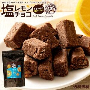 オートミール チョコレート 塩レモンチョコ 100g [ 送料無料 溶けない チョコレート レモン 塩 塩分補給 耐熱 チョコ 塩飴 熱中症 ] チョコ スイーツ グルメ