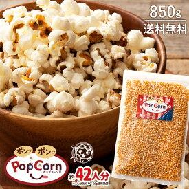 ポップコーン豆 バタフライタイプ 850g 約42人分 [ 送料無料 業務量 ポイント消化 ] おやつ パーティー 1kgより少し少ない850g