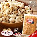 ポップコーン豆 バタフライタイプ 850g 約42人分 [ 送料無料 業務量 ポイント消化 ] おやつ パーティー 1kgより少し少…