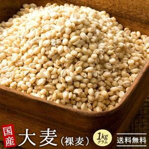 大麦 国産 はだか麦 1kg (500g×2) [ β-グルカン 水溶性食物繊維 食物繊維 裸麦 雑穀 丸麦 麦飯 ヘルシー 穀物 大麦β-グルカン 送料無料 ] お取り寄せグルメ
