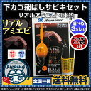 【送料無料】 ハヤブサ 下カゴ飛ばしサビキセット リアルアミエビ HA230 選べる3サイズ 2個セット[ ハヤブサ hayabusa…