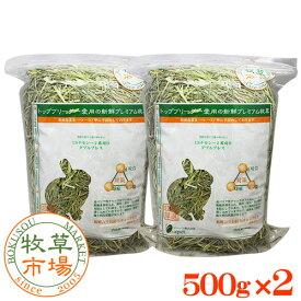 牧草市場 USチモシー2番刈り(プレミアム)牧草 ダブルプレス 1kg (500g×2パック)