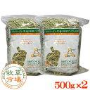牧草市場 カナダ産プレミアムチモシー1番刈り 1kg (500g×2パック)