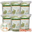 牧草市場 USチモシー1番刈り(プレミアム)牧草 ダブルプレス 3kg (500g×6パック)