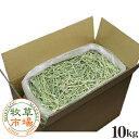 牧草市場 USチモシー1番刈り(プレミアム)牧草 ダブルプレス 10kg袋入 業務用