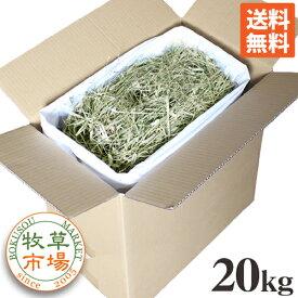 牧草市場 USチモシー2番刈り(プレミアム)牧草 ダブルプレス 20kg袋入 業務用