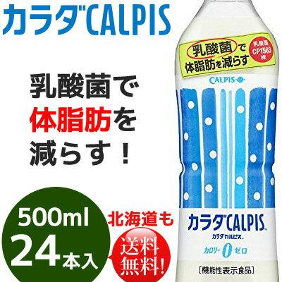 アサヒ飲料 カラダカルピス500ml×24本 乳酸菌【送料無料】