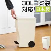 ゴミ箱・キッチンごみ箱・ダストボックス・ペール・ごみ箱・ごみばこ・くずかご・くずいれ