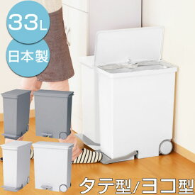 ゴミ箱 容量 33L ゴミ袋最大 45L 国産 全2色 2タイプ DTB600057