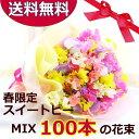 【送料無料】3/15マデのお届け限定!スイートピーミックス100本の花束【あす楽対応】