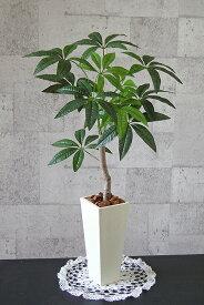 Nパキラ90cm 【smtb-s】【造花】【人工観葉植物】【光触媒】【vd_dl19】