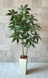 NEW パキラ120cm 【smtb-s】【造花】【人工観葉植物】【光触媒】【vd_dl19】