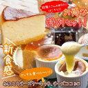 【お世話になってるあの方へ】チーズケーキ2種食べ比べお試しSET!【送料込み】【ギフト】ケーキ スイーツ お菓子 201…