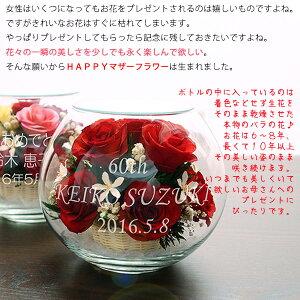 【レビューを書いて赤いちゃんちゃんこプレゼント】テディベアが贈り物を持ってお祝い☆還暦ベアセット<HAPPYマザーフラワー(大)【赤色】>[還暦プレゼント還暦祝いバラ薔薇母プリザーブドフラワー名入れ刻印ぬいぐるみギフト記念品ガラス]