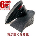 Insole 6cmup000
