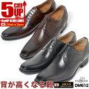 シークレットシューズ 5cm 本革 革靴 日本製 マドラス メンズ ビジネスシューズ マドラスモデロ MODELLO DM612結婚式 冠婚葬祭 フォーマル タキシード ドレスシューズ成人式 就活 面