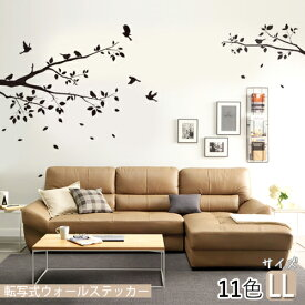 転写式 ウォールステッカー birds tree バードツリー1(LLサイズ) おしゃれ ナチュラル 植物 ツタ 木 葉っぱ 鳥 動物 オリジナルデザイン 大きいサイズ 特大サイズ デコ ポイント 簡単 DIY 選べる11色 賃貸OK