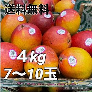 マンゴー 4kg メキシコ産