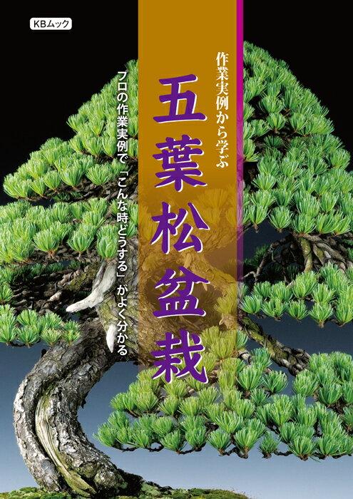 作業実例から学ぶ五葉松盆栽