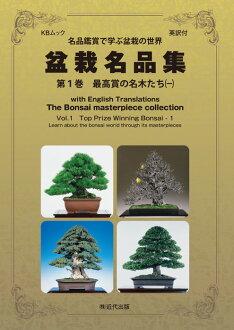 英语翻译与盆景杰作 Vol 1 卷最高奖 koshikake 人 (1)