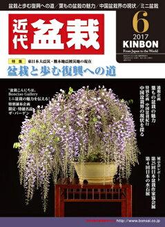 월간 「근대 분재」2017년 6월호