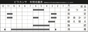 年間培養管理表