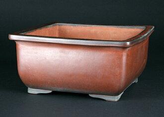 Kowatari Kodei (deep red clay)  square pot