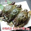 その日に水揚げされた生の宮城県産「わたり蟹」1kg!良いダシが出ます!市場直送!送料無料!※生食不可