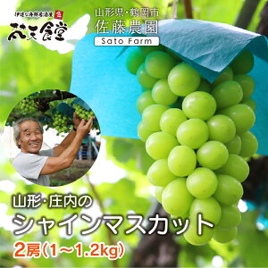 山形県鶴岡市からシャインマスカット2房を産地直送!送料無料!名山と日本海に囲まれた自然豊かな庄内で、糖度18度以上に育った甘いシャインマスカットです!2房で1〜1.2kg。 シャインマ