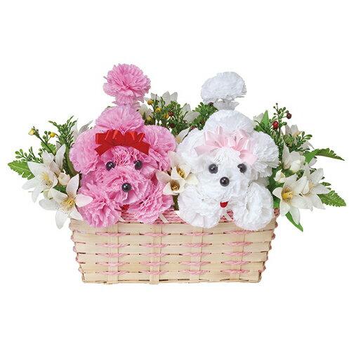 母の品 花 ギフト光の楽園 インテリアフラワー プードルPW【送料無料】光触媒 人工植物 造花 インテリア プレゼント