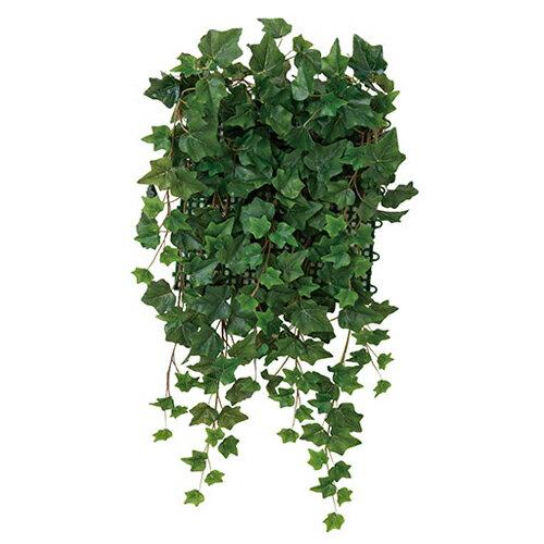 光の楽園 壁面緑化 アイビー観葉植物 壁掛け ウォールグリーンW50×D20×H65cm