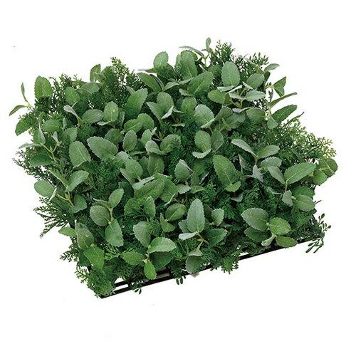 光の楽園 ハーブ ナチュラルマット観葉植物 壁掛け ウォールグリーンW30×D30×H10cm