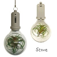 PocketLightBulb壁掛け電球型LEDライト