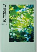 2019年版 1月始まり No.1 中型当用新日記