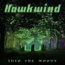 【輸入盤】Into The Woods