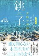 奇跡の清流 銚子川