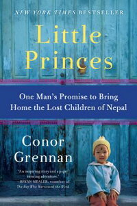LittlePrinces:OneMan'sPromisetoBringHometheLostChildrenofNepal