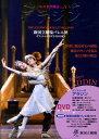 バレエ名作物語(vol.5) 新国立劇場バレエ団オフィシャルDVD BOOKS アラジン