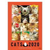 村松誠猫カレンダー(2020) ([カレンダー])