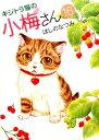 キジトラ猫の小梅さん 16巻 (コミック ねこぱんちコミックス) [ ほしの なつみ ]