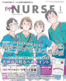 Expert Nurse (エキスパートナース) 2021年 01月号 [雑誌]
