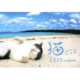 猫どころカレンダー ([カレンダー])