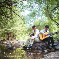 夏国のアクア Aqua in summer countries