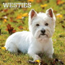 West Highland White Terriers 2019 Square Foil