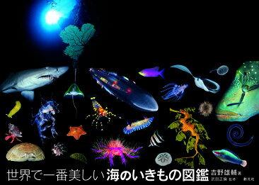 世界で一番美しい海のいきもの図鑑 [ 吉野雄輔 ]