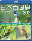 日本百鳴鳥 202 HDハイビジョン映像と鳴き声で愉しむ野鳥図鑑【Blu-ray】