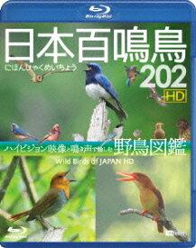 日本百鳴鳥 202 HDハイビジョン映像と鳴き声で愉しむ野鳥図鑑【Blu-ray】 [ (趣味/教養) ]