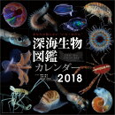 【壁掛】深海生物図鑑(2018カレンダー)